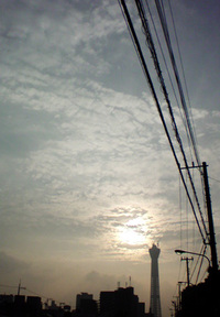 20100706174119