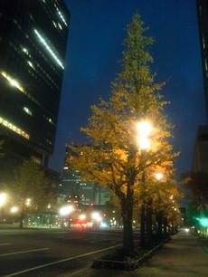 Photo_20131206_060023
