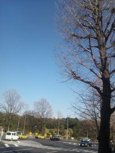 Photo_20140129_140317